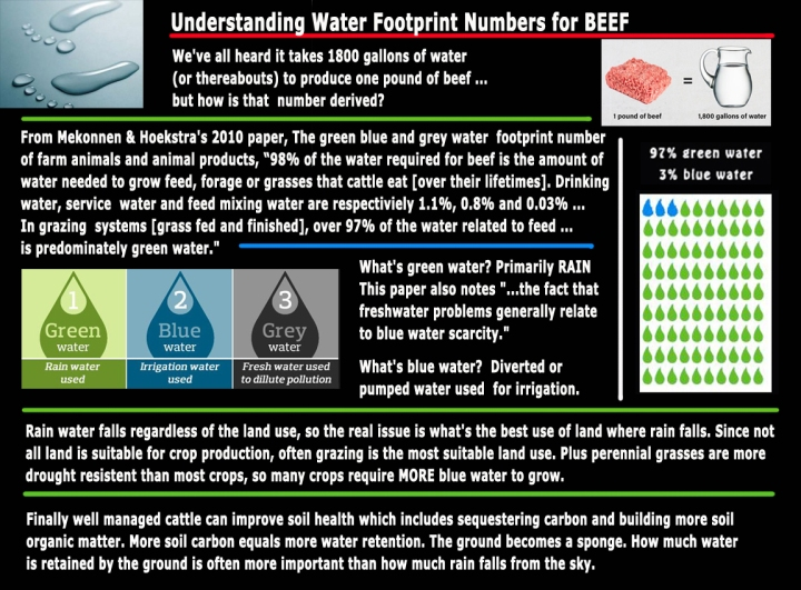 understanding water footprint numbers