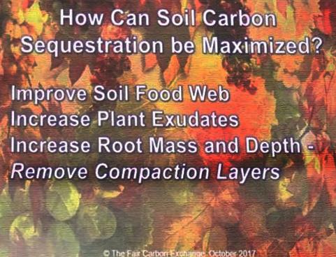 improve carbon