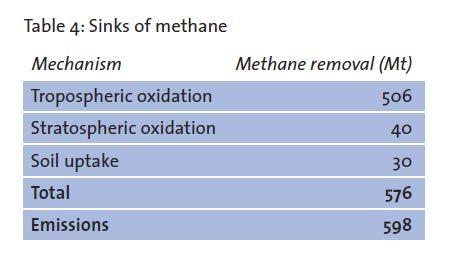 methane sinks