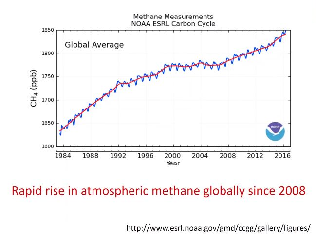 recent methane levels