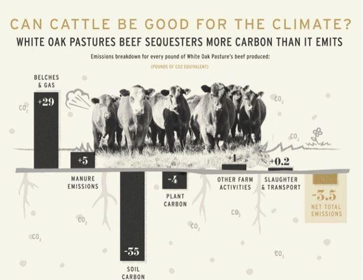 white oaks pastures -LCA- net emissions