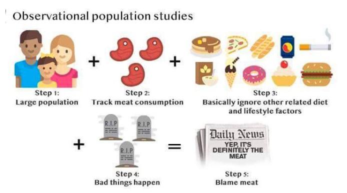 meat observational studies